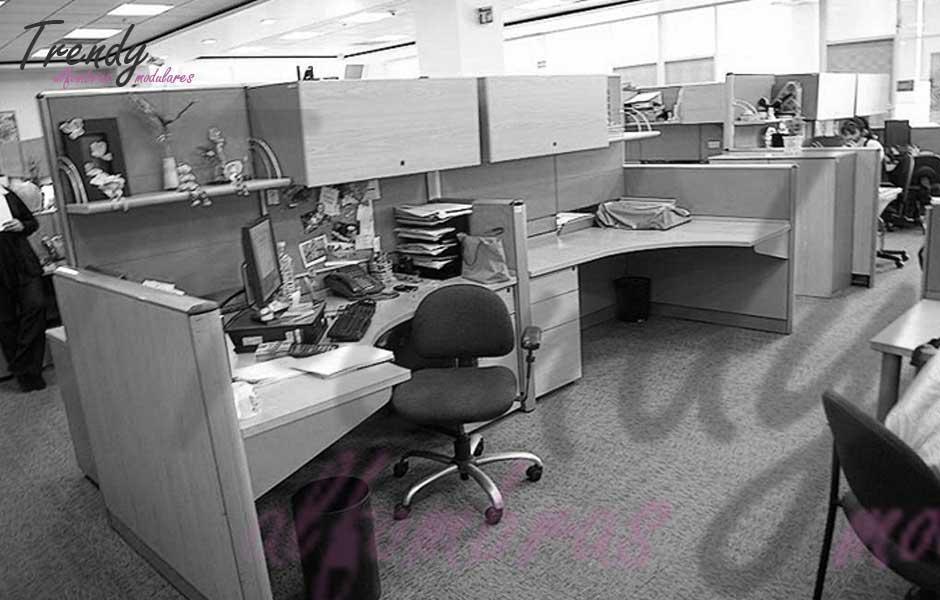 alfrombas-para-oficinas-1